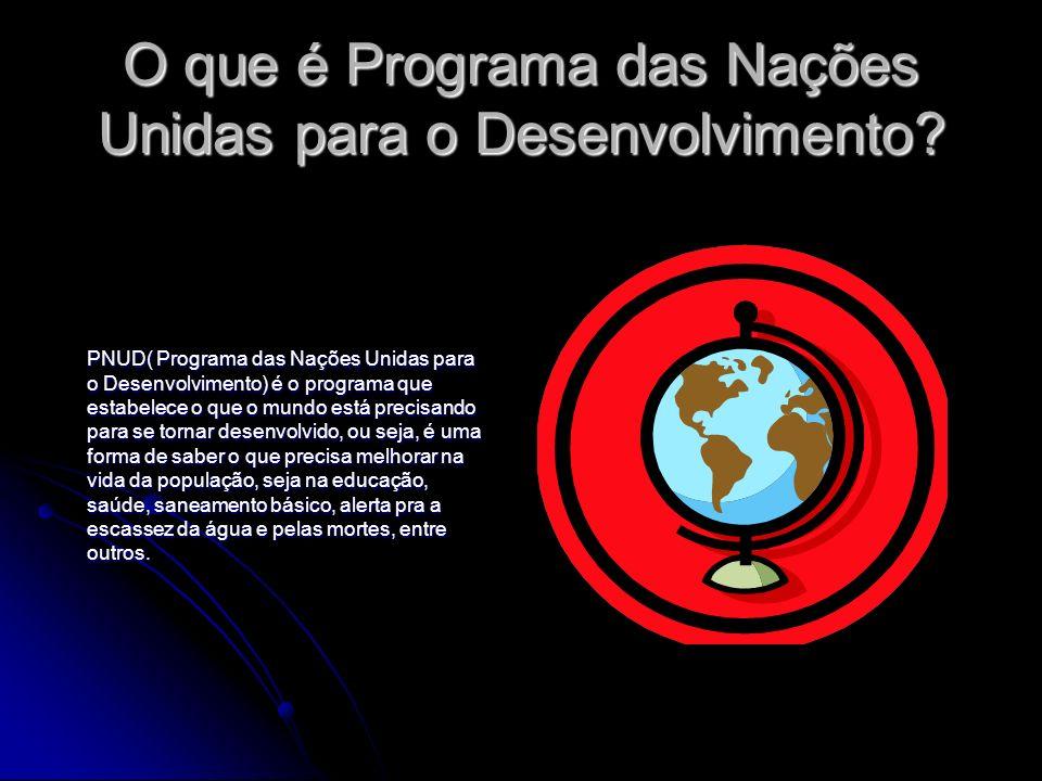 O que é Programa das Nações Unidas para o Desenvolvimento
