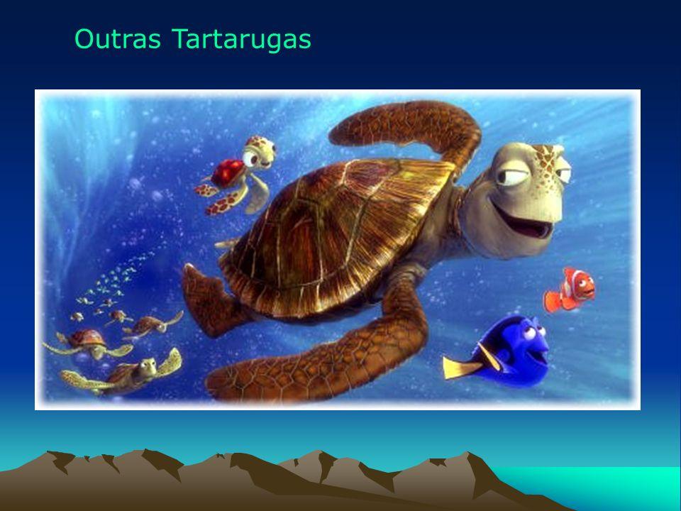 Outras Tartarugas