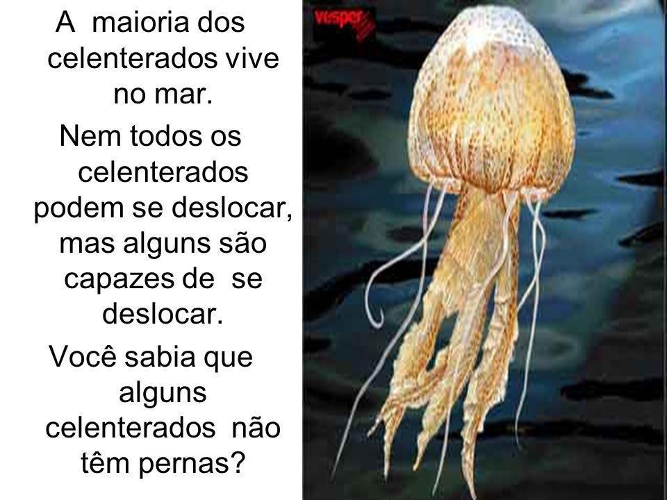 A maioria dos celenterados vive no mar.