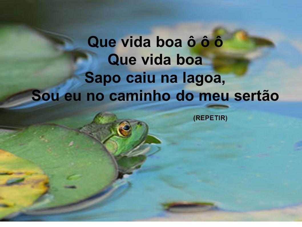 Que vida boa ô ô ô Que vida boa Sapo caiu na lagoa, Sou eu no caminho do meu sertão (REPETIR)