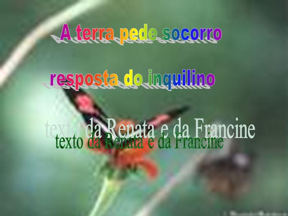 texto da Renata e da Francine