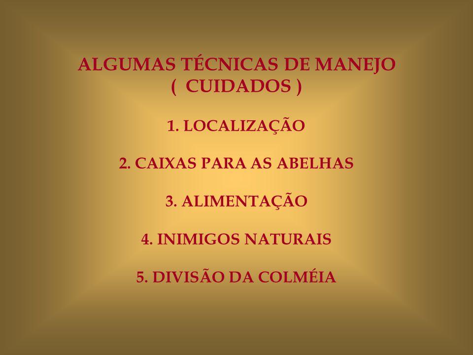 ALGUMAS TÉCNICAS DE MANEJO ( CUIDADOS ) 1. LOCALIZAÇÃO 2