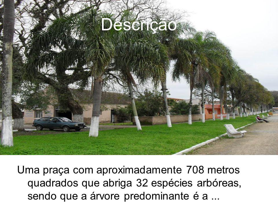 Descrição Uma praça com aproximadamente 708 metros quadrados que abriga 32 espécies arbóreas, sendo que a árvore predominante é a ...