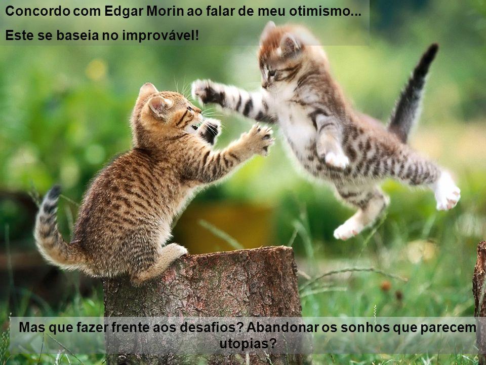 Concordo com Edgar Morin ao falar de meu otimismo...