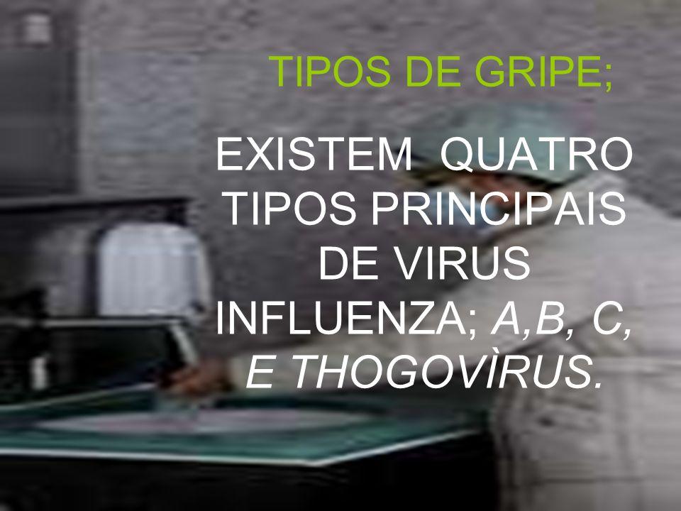 TIPOS DE GRIPE; EXISTEM QUATRO TIPOS PRINCIPAIS DE VIRUS INFLUENZA; A,B, C, E THOGOVÌRUS.