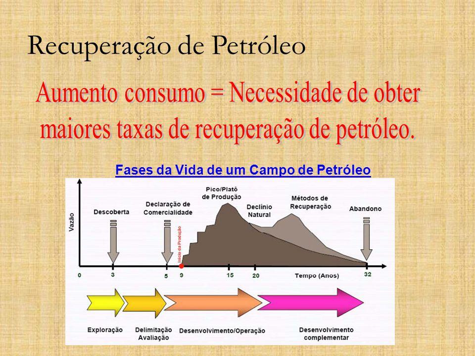 Recuperação de Petróleo