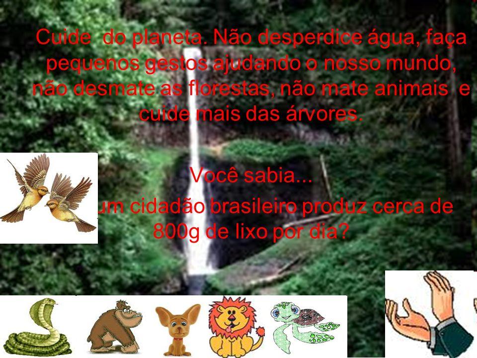 Que um cidadão brasileiro produz cerca de 800g de lixo por dia