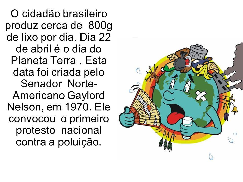 O cidadão brasileiro produz cerca de 800g de lixo por dia