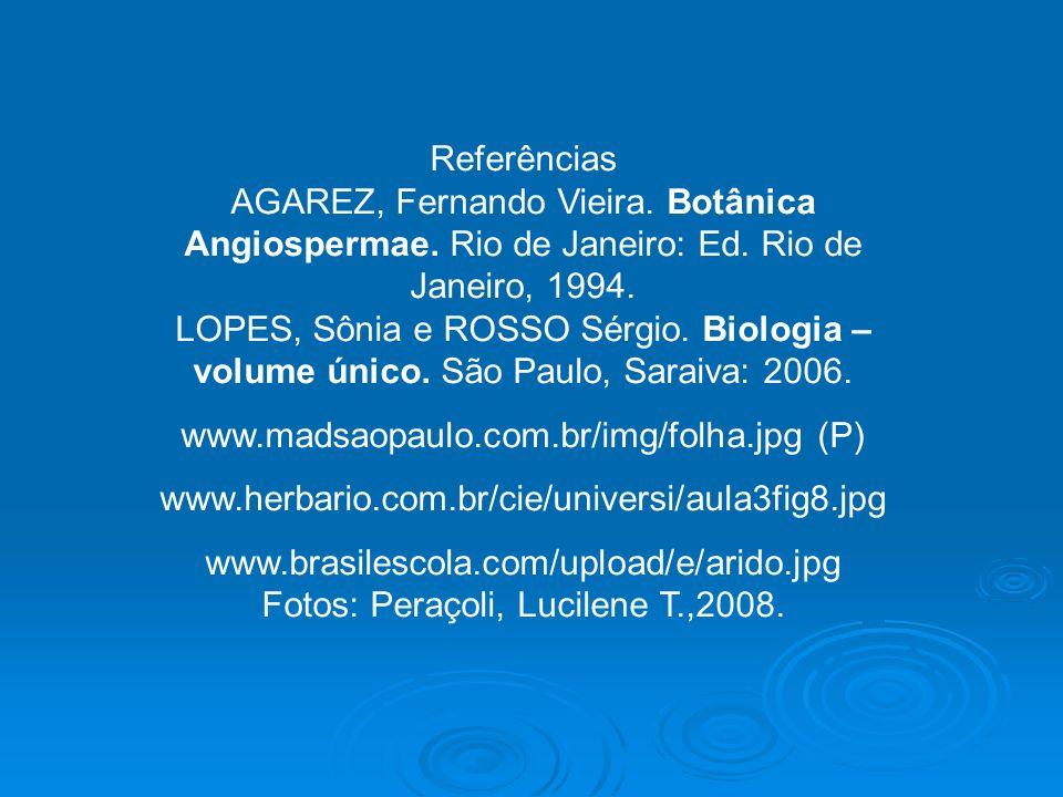 www.madsaopaulo.com.br/img/folha.jpg (P)
