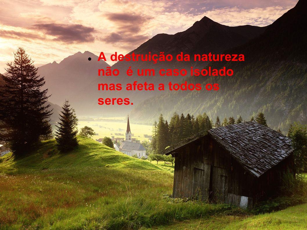 A destruição da natureza não é um caso isolado mas afeta a todos os seres.
