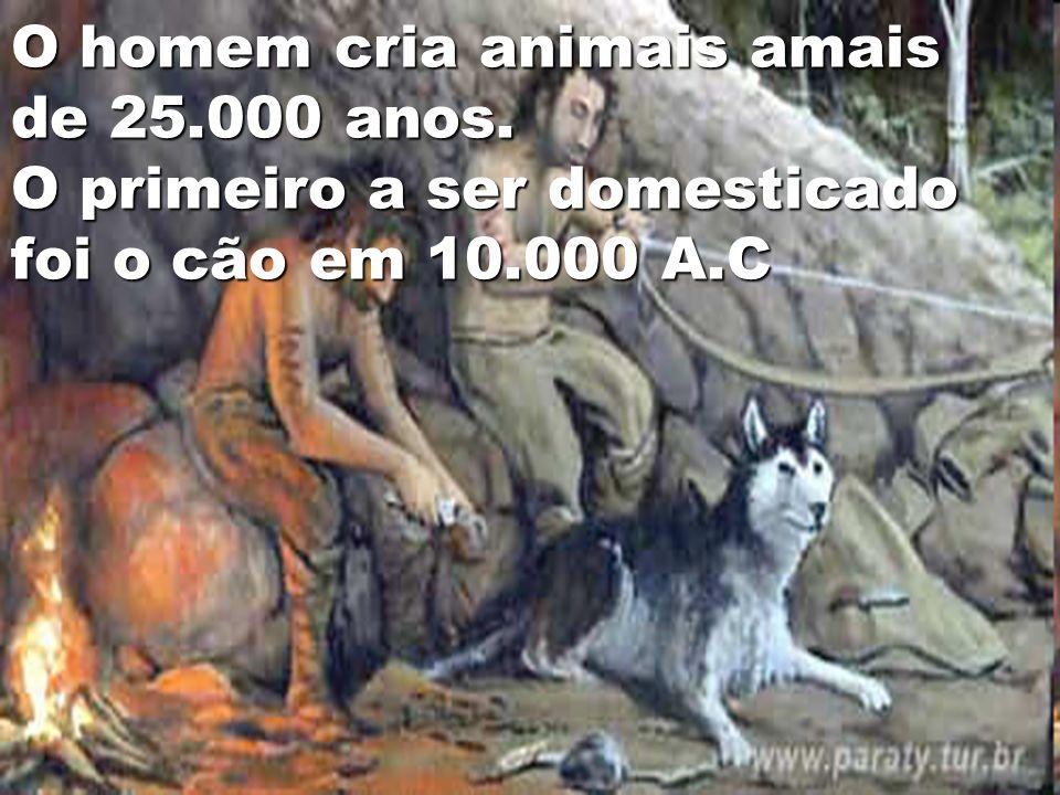 O homem cria animais amais de 25. 000 anos