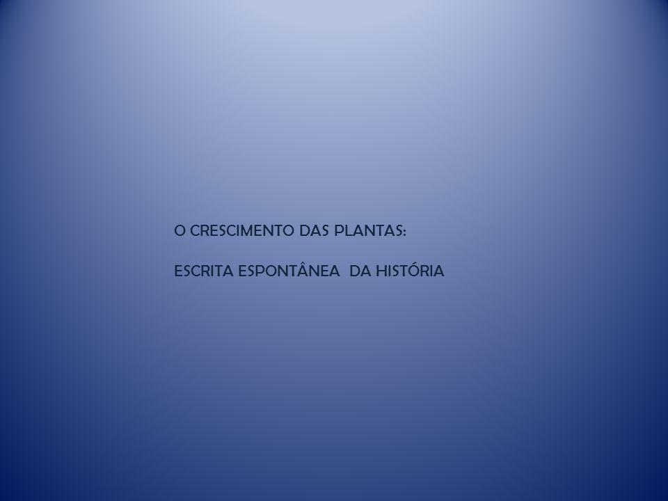 O CRESCIMENTO DAS PLANTAS:
