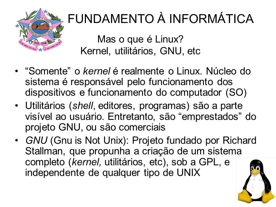 Mas o que é Linux Kernel, utilitários, GNU, etc