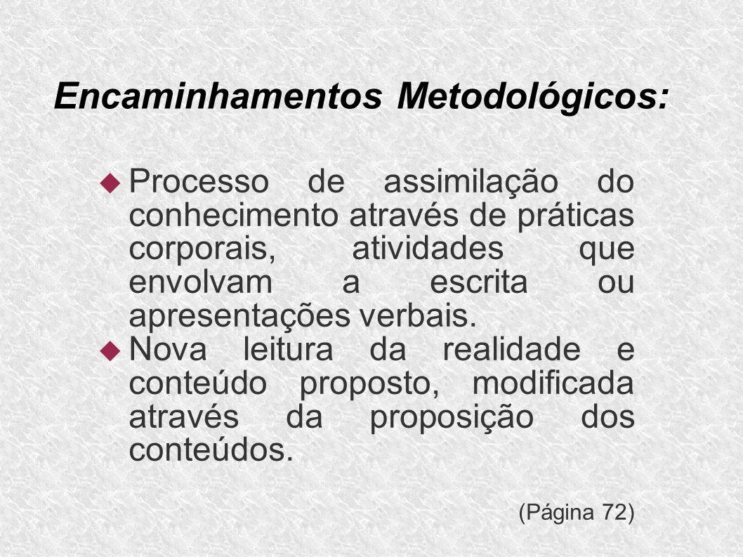 Encaminhamentos Metodológicos: