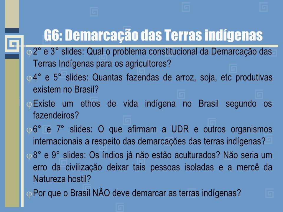 G6: Demarcação das Terras indígenas
