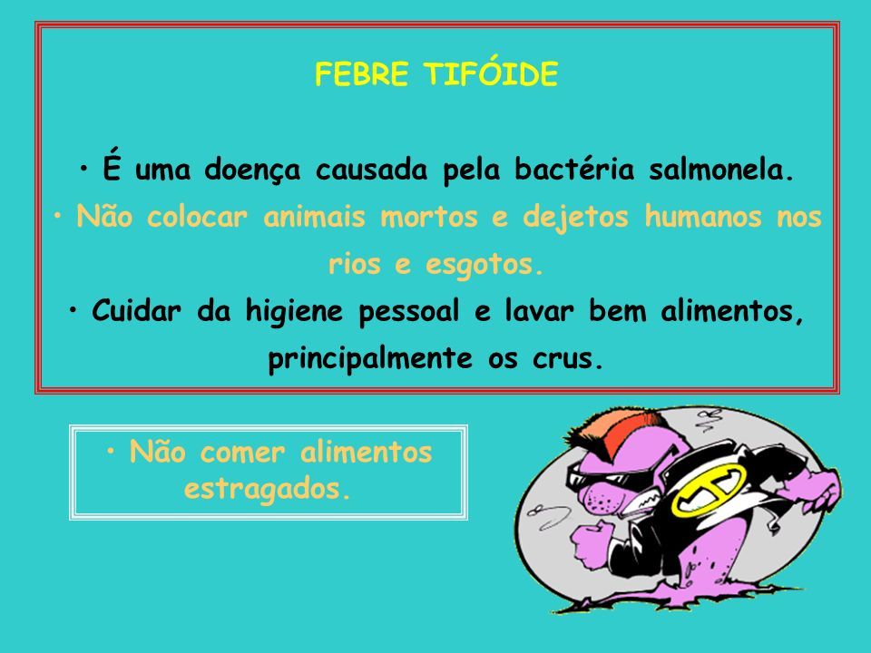 É uma doença causada pela bactéria salmonela.