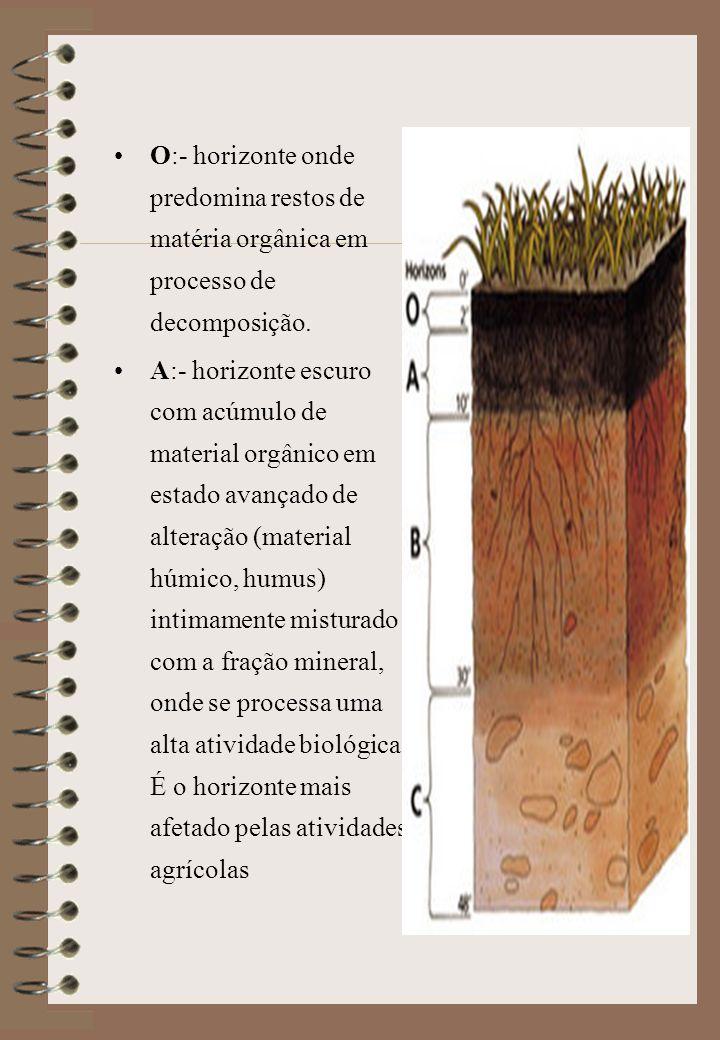 O:- horizonte onde predomina restos de matéria orgânica em processo de decomposição.