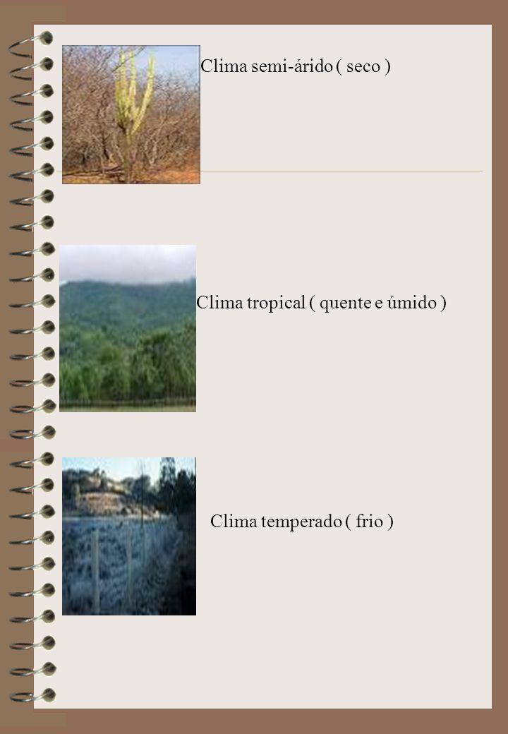 Clima semi-árido ( seco )