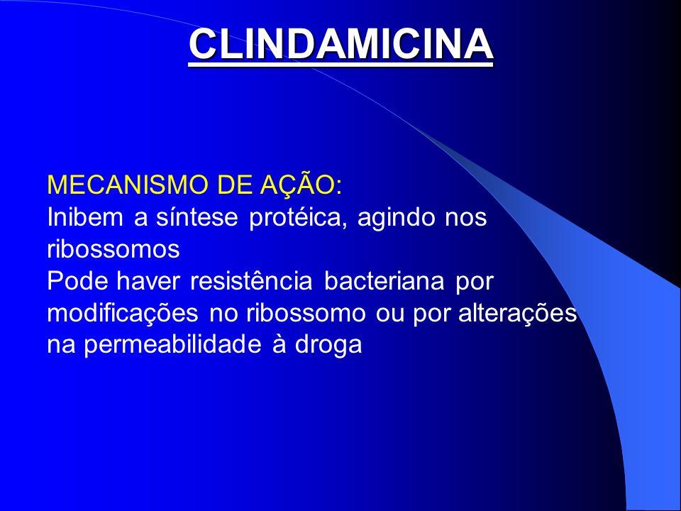 CLINDAMICINA MECANISMO DE AÇÃO: