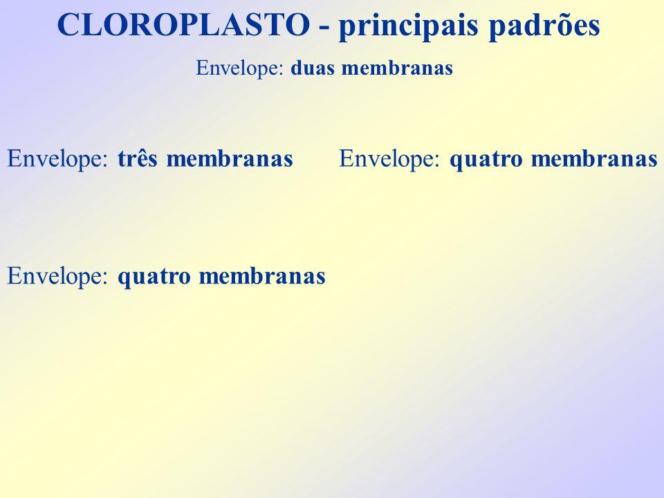 CLOROPLASTO - principais padrões