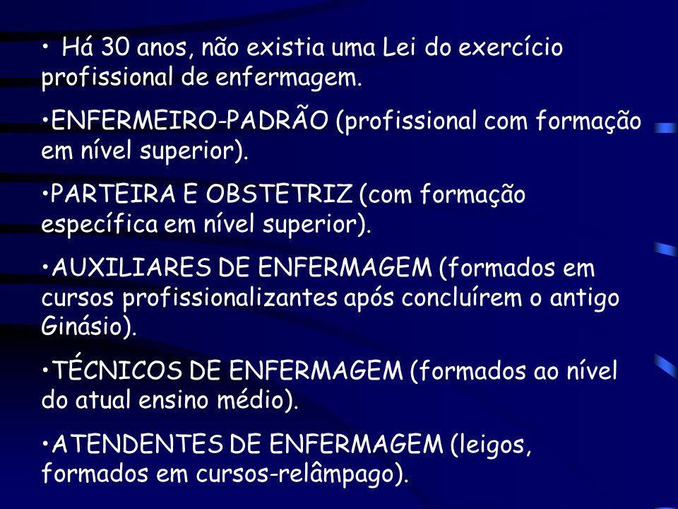 ENFERMEIRO-PADRÃO (profissional com formação em nível superior).