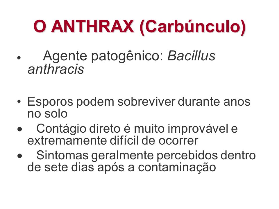 O ANTHRAX (Carbúnculo)