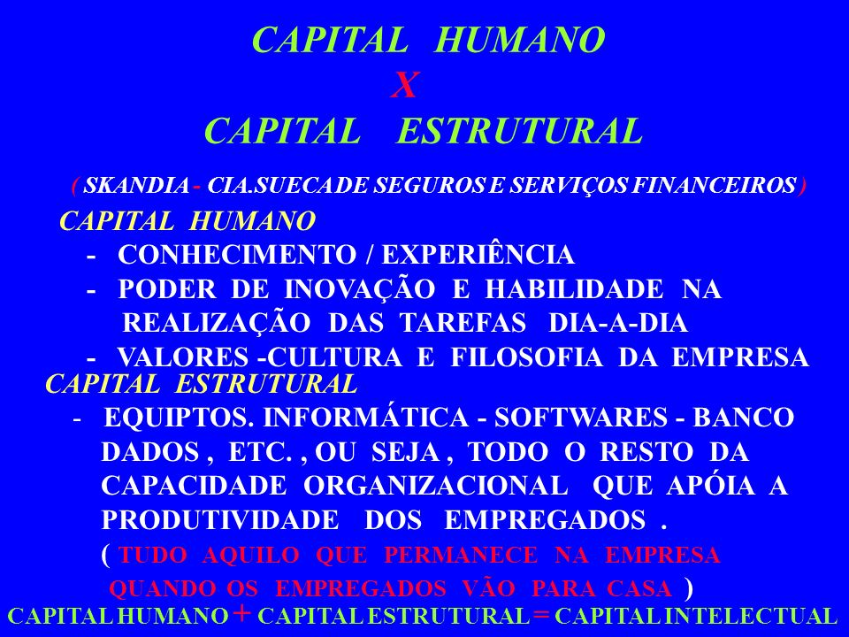 X CAPITAL ESTRUTURAL CAPITAL HUMANO CAPITAL HUMANO