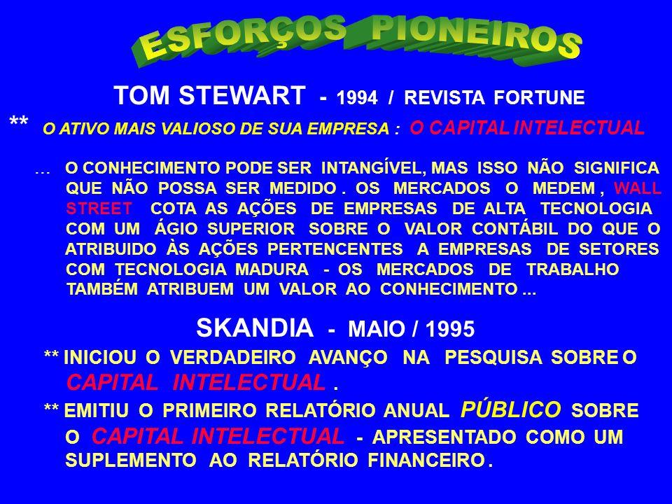 ESFORÇOS PIONEIROS TOM STEWART - 1994 / REVISTA FORTUNE