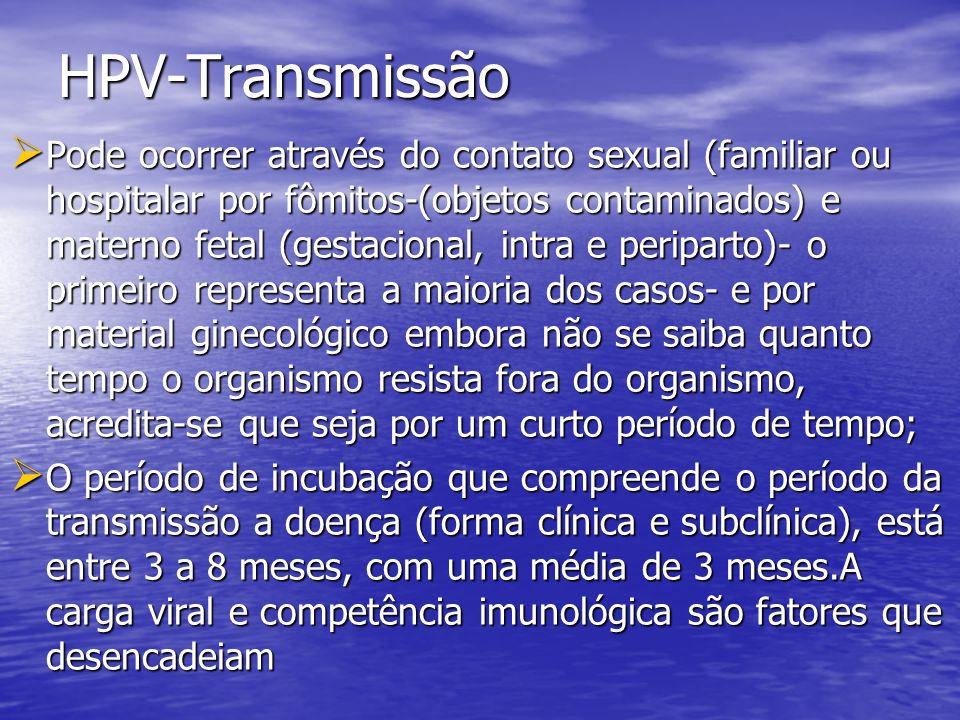 HPV-Transmissão