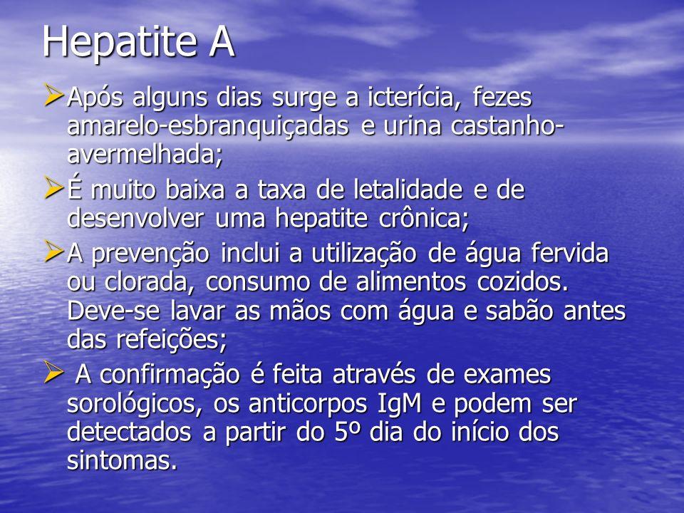 Hepatite A Após alguns dias surge a icterícia, fezes amarelo-esbranquiçadas e urina castanho-avermelhada;