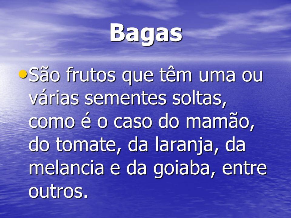 Bagas São frutos que têm uma ou várias sementes soltas, como é o caso do mamão, do tomate, da laranja, da melancia e da goiaba, entre outros.