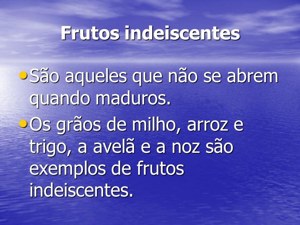 Frutos indeiscentes São aqueles que não se abrem quando maduros.