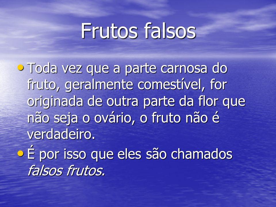 Frutos falsos