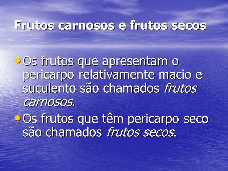 Frutos carnosos e frutos secos
