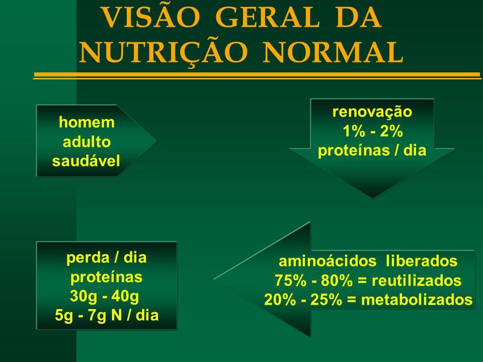 VISÃO GERAL DA NUTRIÇÃO NORMAL aminoácidos liberados