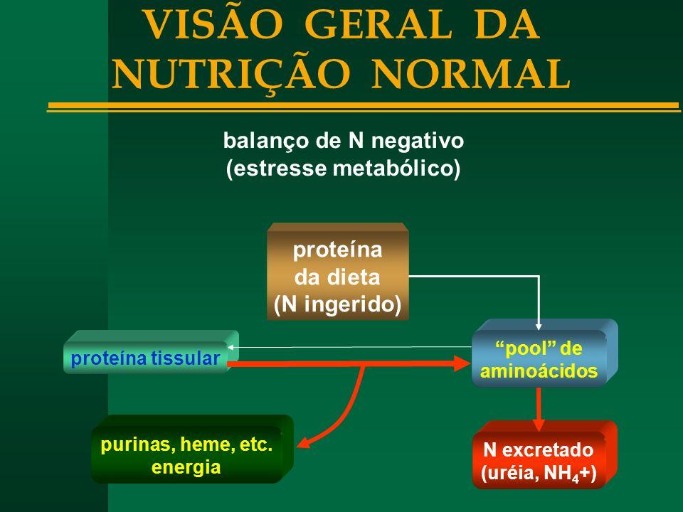 VISÃO GERAL DA NUTRIÇÃO NORMAL (estresse metabólico)