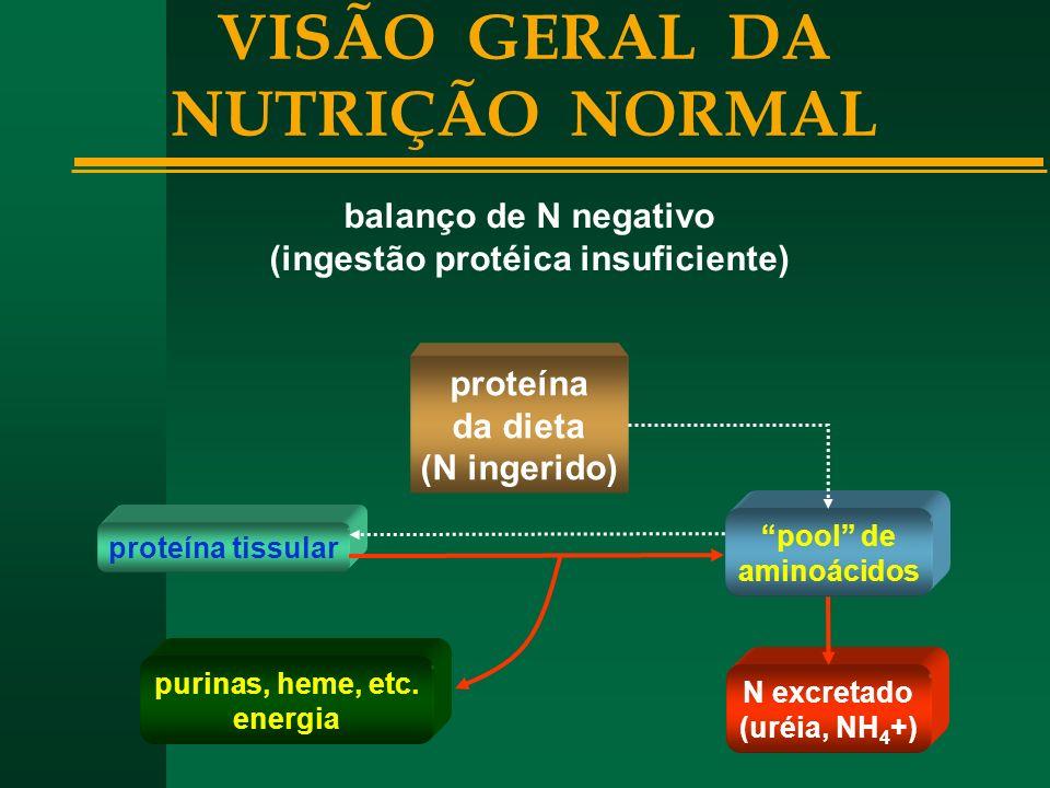 VISÃO GERAL DA NUTRIÇÃO NORMAL (ingestão protéica insuficiente)