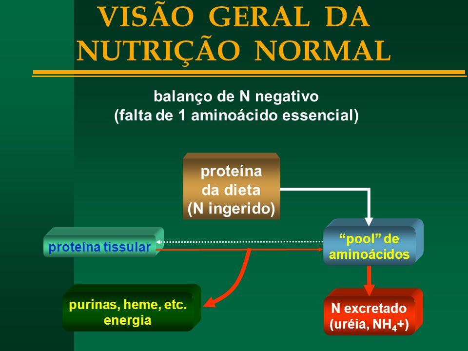 VISÃO GERAL DA NUTRIÇÃO NORMAL (falta de 1 aminoácido essencial)