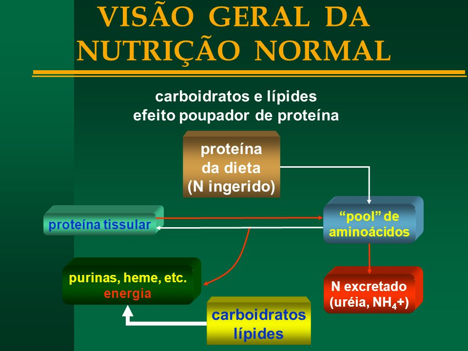 VISÃO GERAL DA NUTRIÇÃO NORMAL