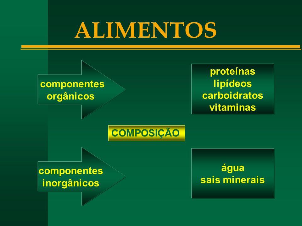 ALIMENTOS proteínas componentes lipídeos orgânicos carboidratos