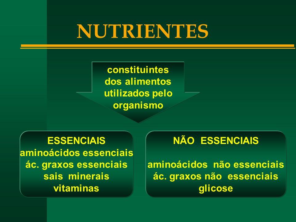NUTRIENTES constituintes dos alimentos utilizados pelo organismo