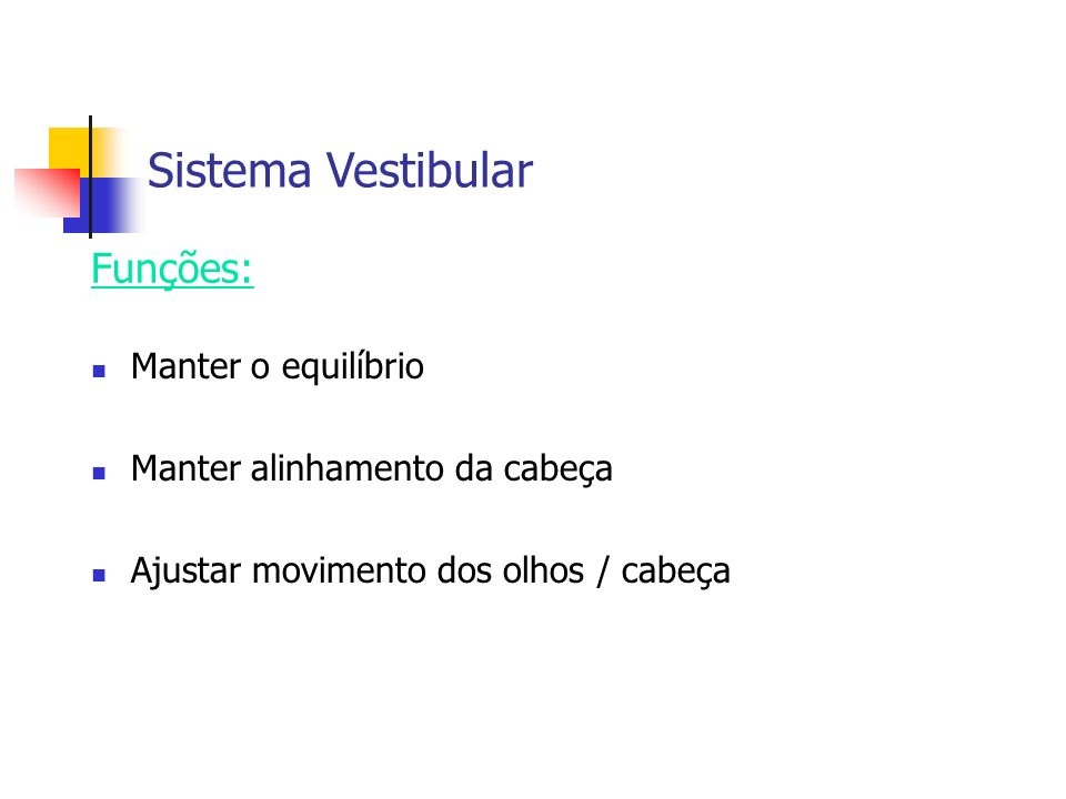 Sistema Vestibular Funções: Manter o equilíbrio