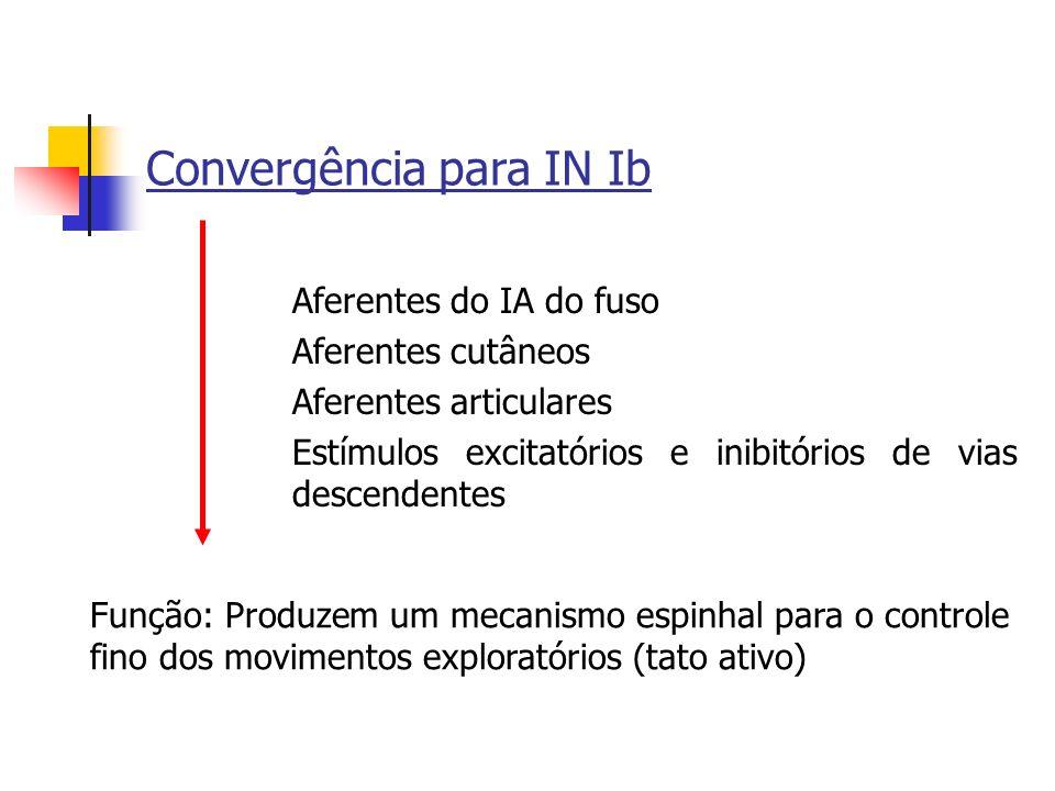 Convergência para IN Ib