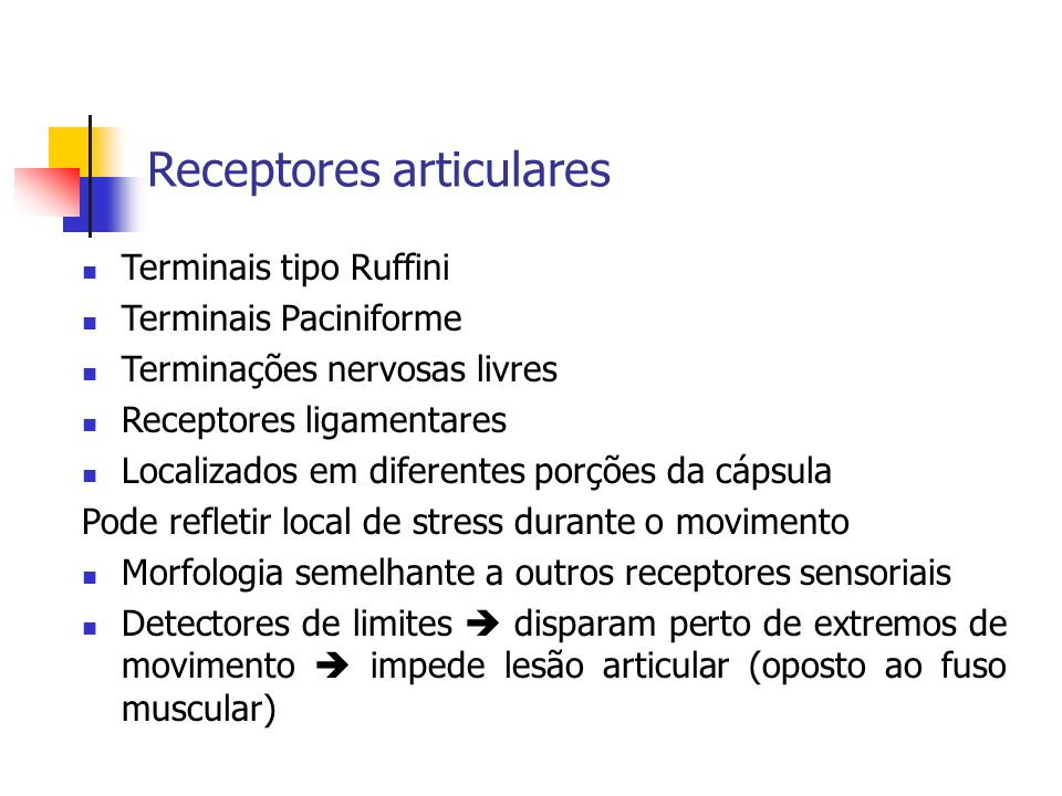 Receptores articulares