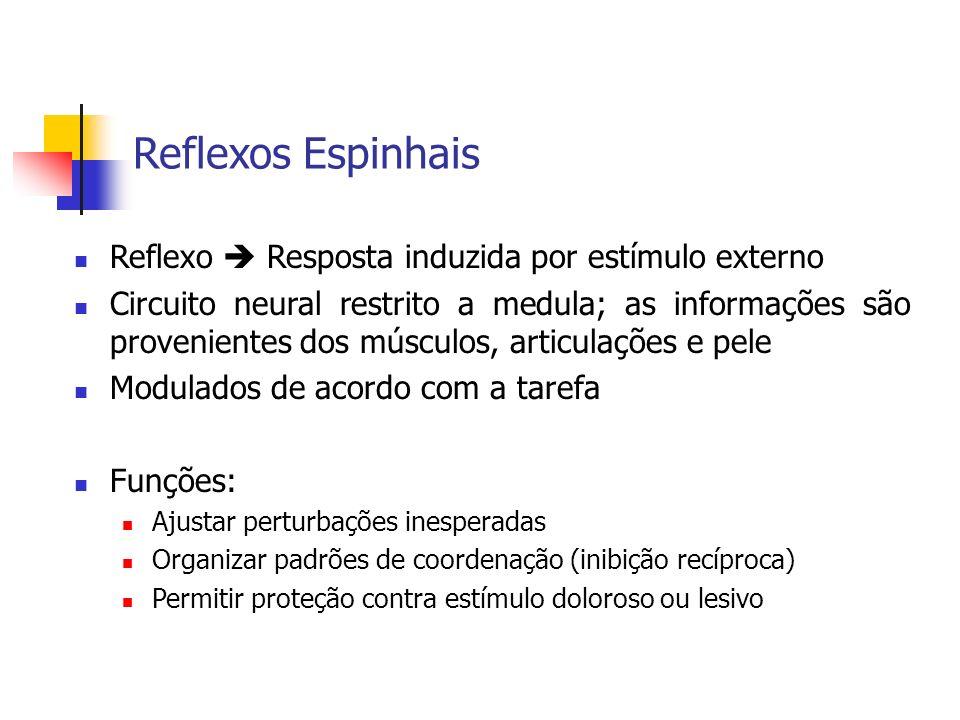 Reflexos Espinhais Reflexo  Resposta induzida por estímulo externo