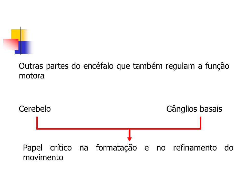 Outras partes do encéfalo que também regulam a função motora