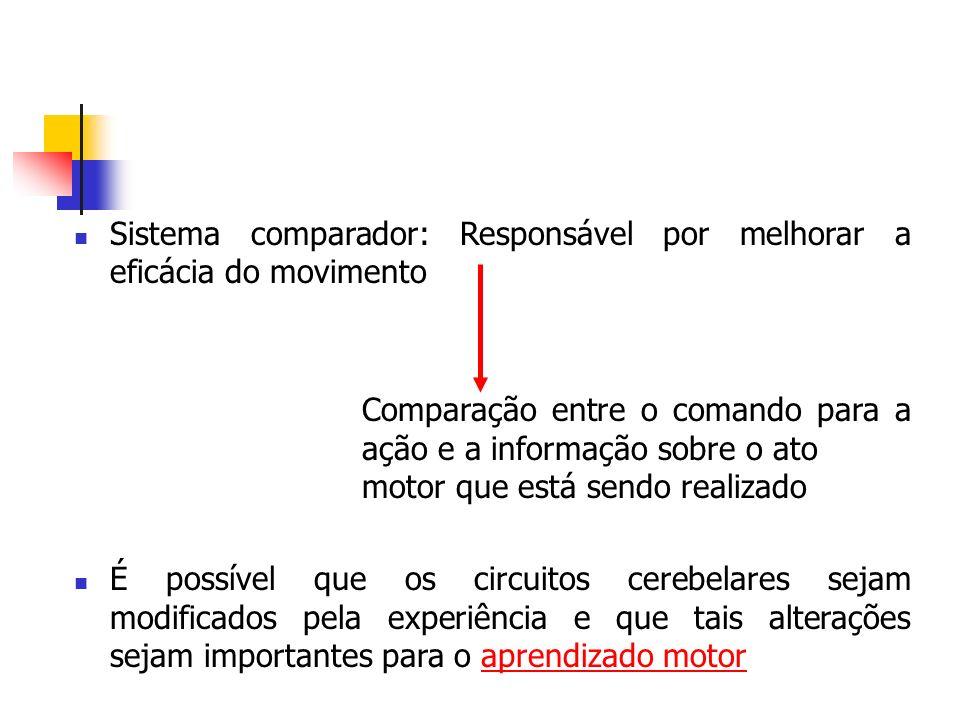 Sistema comparador: Responsável por melhorar a eficácia do movimento