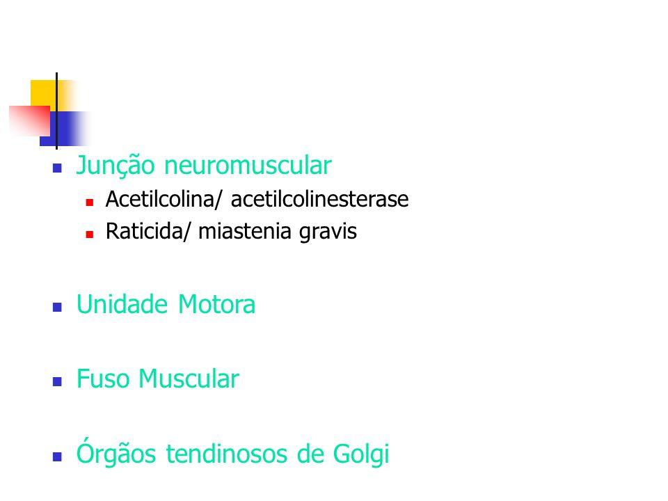 Órgãos tendinosos de Golgi