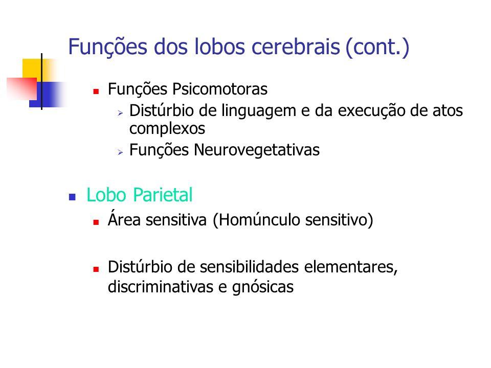 Funções dos lobos cerebrais (cont.)