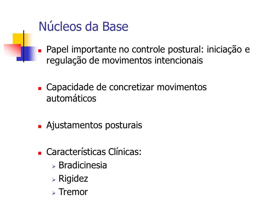 Núcleos da Base Papel importante no controle postural: iniciação e regulação de movimentos intencionais.